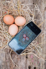 The​ smart farmer use smart​ phone technology​ ​to sell eggs.