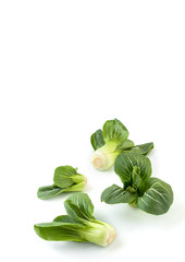 Buds Chinese cabbage Pak-choi (salad) on a clean white background. Isolated.