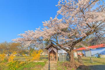 春のみなかみ町の地蔵堂の風景