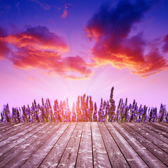 Wooden table with lavender flower at sunset.