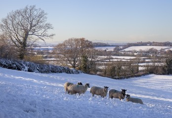 Wintertime at the Cotswolds, Gloucestershire, England