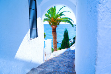 Palm tree and sea seen trough a arch in a white wall. Spain. Nerja