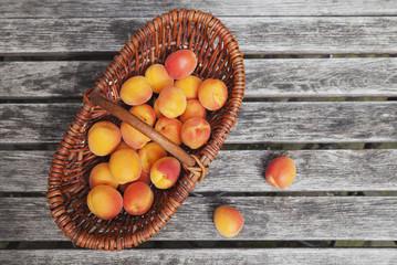 Wickerbasket of apricots
