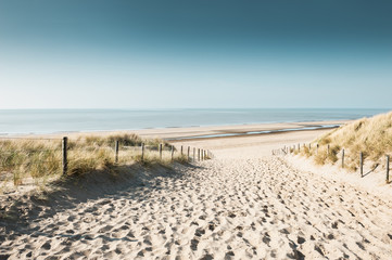 Sandy dunes on the coast of North sea in Noordwijk, Netherlands, Europe. Wall mural