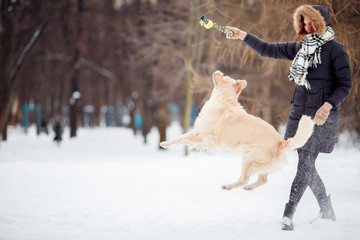 Photo of woman playing with labrador in snowy park