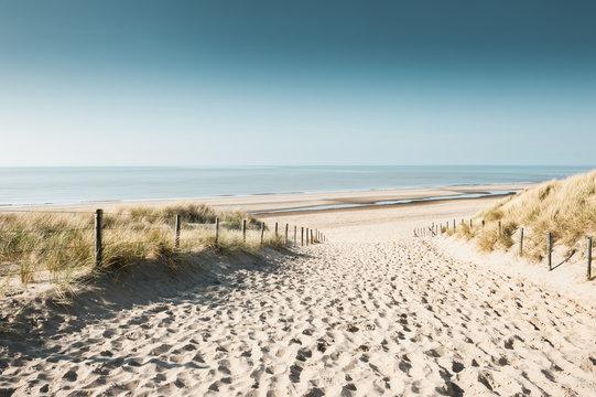 Sandy dunes on the coast of North sea in Noordwijk, Netherlands, Europe.