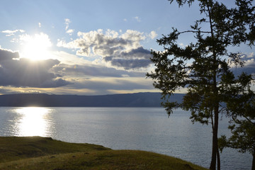 sunset with a lonely tree, Lake Baikal, Olkhon Island, Khuzhir town