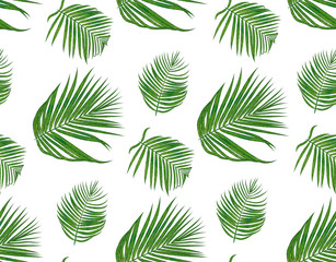 Seamless pattern with areca palm tropical seeded branch, green leaves cute wallpaper watercolor style. Vector boho elegant print isolated on white background