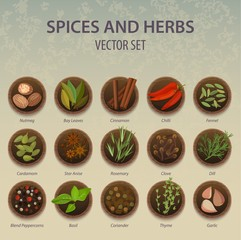 Plates with spice and herbs, seasoning ingredient