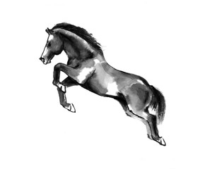 Sumi-e illustration of a horse leaping, moving to the left. Oriental ink painting, isolated on white background.