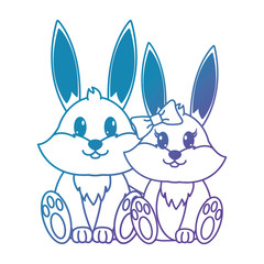 blue line rabbit couple cute animal together