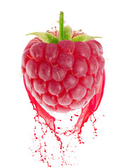 raspberry in juice splash isolated on a white background