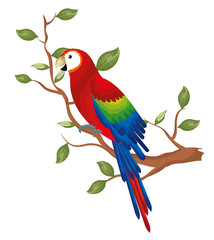 tropical parrot in branch tree vector illustration design