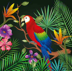 tropical and exotic garden with parrot vector illustration design