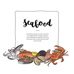Vector hand drawn seafood elements
