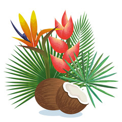 tropical garden with coconut vector illustration design fruits, leaves and flowers, summer and exotic concept
