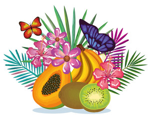 tropical garden with papaya and kiwi vector illustration design fruits, leaves and flowers, summer and exotic concept