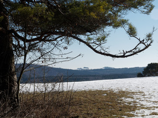 Hügelige Landschaft im Winter - Schnee auf den Feldern und schwarze Baumkulissen