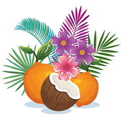 tropical garden with orange and coconut vector illustration design fruits, leaves and flowers, summer and exotic concept