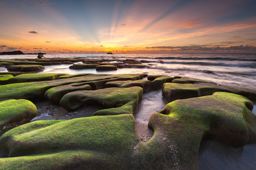 beautiful sunset seascape with green moss and ray of light. Wall mural