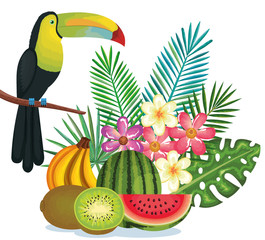 tropical garden with fruits and toucan vector illustration design fruits, leaves and flowers, summer and exotic concept