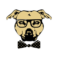 American Pit Bull Terrier with bow tie and glasses vector illustration