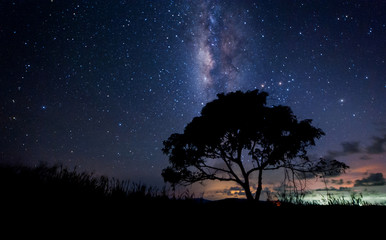 starry night and milky way galaxy  with lone tree. image contain soft  focus, blur and noise due to long expose and high iso.