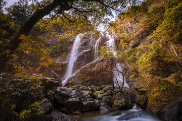 Autumn leaves with waterfall in deep forest