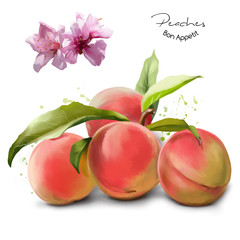 Peaches and splashes of watercolor painting