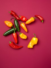 Bright peppers on pink background