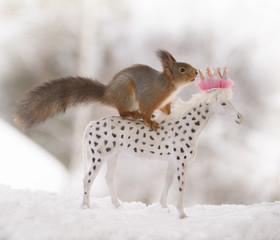 Red squirrel standing on an royal horse