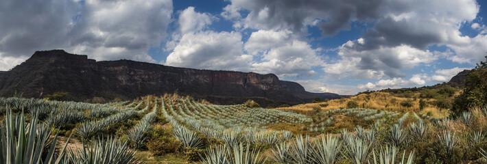 Acatic Mexico