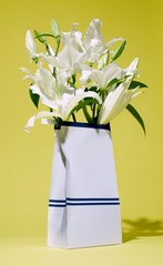 Bag of white lily flowers studio shot