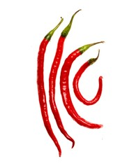 Four red cayenne peppers on white background