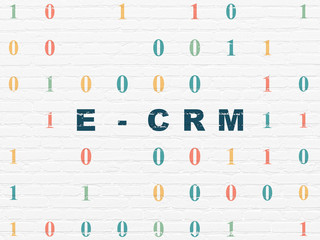 Finance concept: Painted blue text E-CRM on White Brick wall background with Binary Code