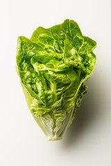 Head of green lettuce on white background