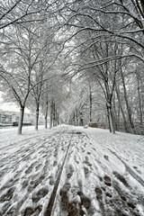 """#sylvainlandry #A7II #Sony #photographe #photographer <p>More photos / en voir plus sur : <a href=""""http://www.sylvain-landry.com"""" target=""""_blank"""">www.sylvain-landry.com</a></p>"""