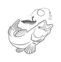 zander fishing