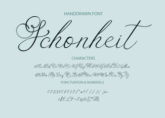 Handrawn vector alphabet. Modern calligraphic font. Brush painted letters.