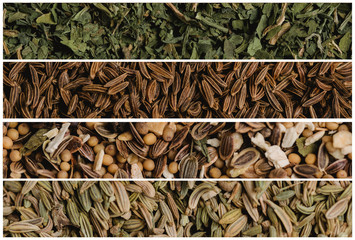 Collage of various spice seeds. Parsley and cumin, seasoning for pickling and fennel. Macro photography.