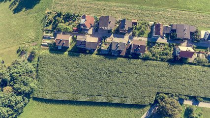 Drop down view of rural houses next to corn field.
