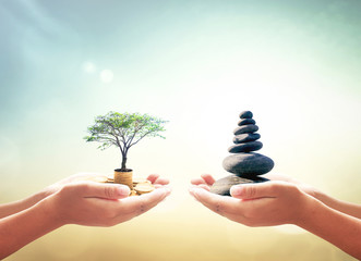 Investment and fund concept: Two human hands holding stacks of golden money with big tree and Zen stones on blurred nature background