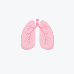 Flat design human lungs icon. Human internal organ. Anatomy concept. Respiratory system. Healthcare