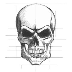 Skull pencil sketch vector
