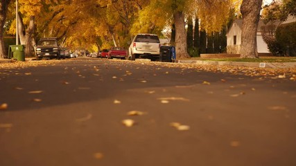 Wall Mural - Beautiful autumn street perspective, slider shot across city road.  Slow motion, 4K UHD.