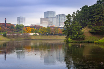 Cityscape of Tokyo with autumnal park, Japan
