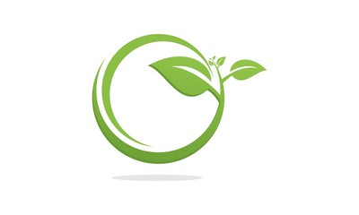 Green Leaf Eco Organic Logo