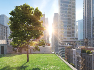 garden in a big city. living concept. 3d rendering