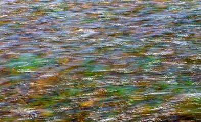 Agua en movimiento con vegetación de fondo.