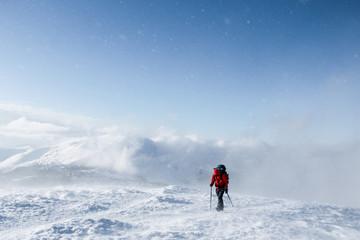hiker walking on snowy mountains in winter, Carpathian Mountains, Ukraine